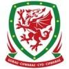 Wales Dětské Dres